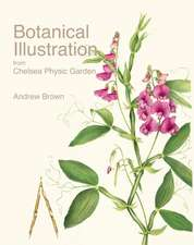 Botanical Illustration from Chelsea Physic Garden