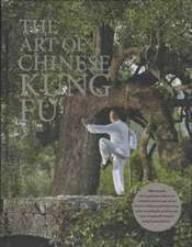 Art of Chinese Kung Fu