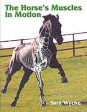 The Horse's Muscles in Motion:  Making Shows Happen
