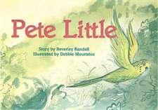Pete Little PM Set 1 Green Level 12