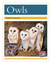 Owls PM Non Fiction Animal Facts Level 22 Nocturnal Animals Gold