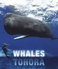 Whales and Dolphins of Aotearoa New Zealand