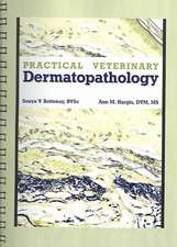 Practical Veterinary Dermatopathology:  For the Small Animal Clinician