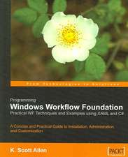 Programming Windows Workflow Foundation