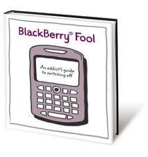 BlackBerry Fool: An Addict′s Guide to Switching Off
