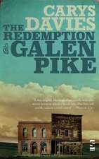 The Redemption of Galen Pike:  A Guide to the Art of the Short Story. Edited by Vanessa Gebbie (Revised)