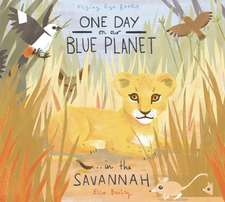 One Day on Our Blue Planet . . . in the Savannah:  And the Hot Air Contraption