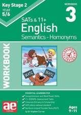 KS2 Semantics Year 5/6 Workbook 3 - Homonyms