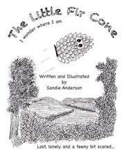 The Little Fir Cone