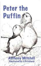 Peter the Puffin