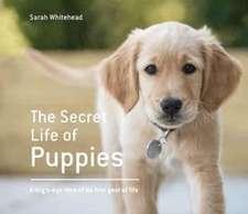 Secret Life of Puppies