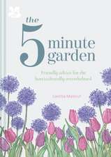 The 5 Minute Garden