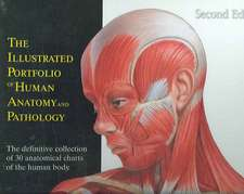 The Illustrated Portfolio of Human Anatomy and Pathology:  The Definitive Collection of 30 Anatomical Charts of the Human Body.