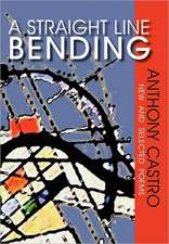 A Straight Line Bending, New and Selected Poems