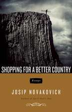 Shopping For A Better Country: Essays