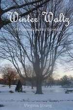Winter Waltz:  How t