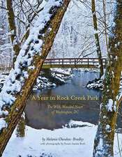 A Year in Rock Creek Park, Deluxe Edition:  The Wild, Wooded Heart of Washington, DC