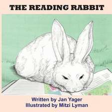 The Reading Rabbit:  Comprising the Dunlith Hill Writing Guides to Story Theory, Verisimilitude, and Character and Archetype
