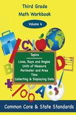 Third Grade Math Volume 6