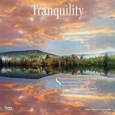 Tranquility 2020 Square