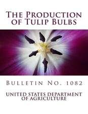 The Production of Tulip Bulbs