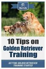 10 Tips on Golden Retriever Training