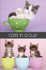 Cats in a Cup