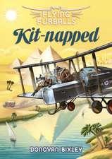 Flying Furballs 5: Kit-napped