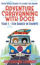 Year 1 - Fur Babies in France
