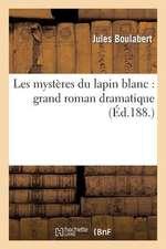 Les Mysteres Du Lapin Blanc