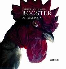 Schlienger, P: Rooster