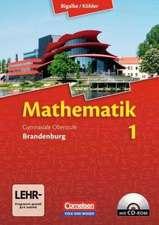 Mathematik Sekundarstufe II - Brandenburg - Neubearbeitung 2012 / Band 1 - Schülerbuch mit CD-ROM
