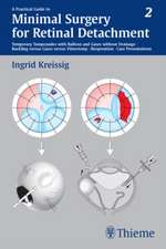 Practical Guide to Minimal Surgery for Retinal Detachment, Volume II