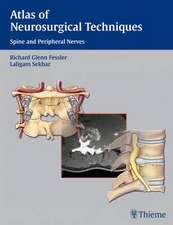 Atlas of Neurosurgical Techniques