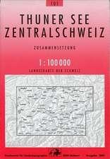Swisstopo 1 : 100 000 Thunersee Zentralschweiz