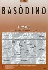 Swisstopo 1 : 25 000 Basòdino