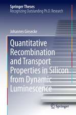 Quantitative Recombination and Transport Properties in Silicon from Dynamic Luminescence