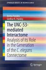 The UNC-53-mediated Interactome: Analysis of its Role in the Generation of the C. elegans Connectome