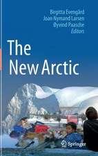 The New Arctic