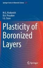 Plasticity of Boronized Layers