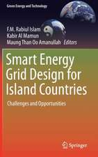 Smart Energy Grid Design for Island Countries: Challenges and Opportunities