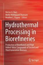 Hydrothermal Processing in Biorefineries: Production of Bioethanol and High Added-Value Compounds of Second and Third Generation Biomass