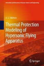 Thermal Protection Modeling of Hypersonic Flying Apparatus