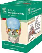 Flashcards Anatomy: Latin Nomenclature