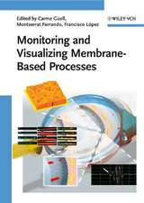 Monitoring and Visualizing Membrane–Based Processes