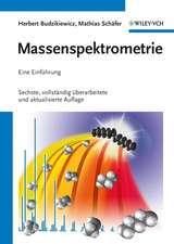 Massenspektrometrie: Eine Einführung