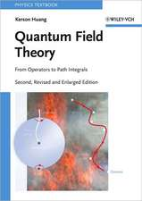 Quantum Field Theory: From Operators to Path Integrals