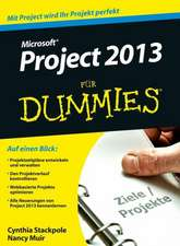Microsoft Project 2013 für Dummies