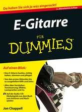 E–Gitarre für Dummies