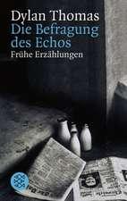 Die Befragung des Echos